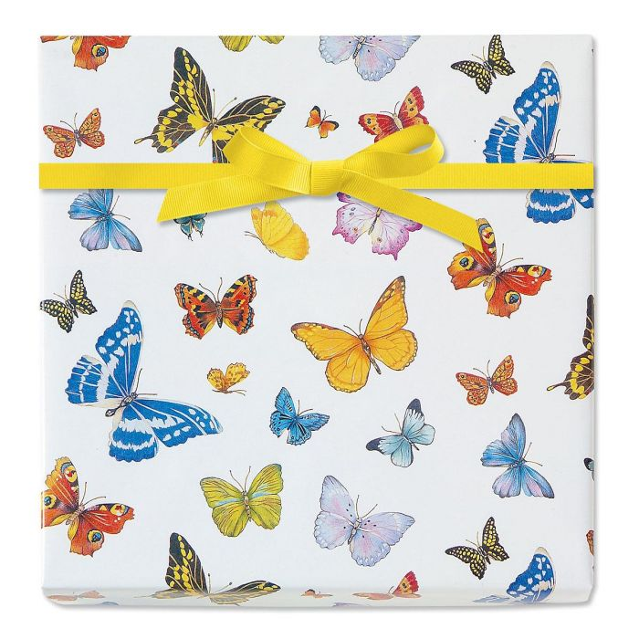 Butterfly Dreams Jumbo Rolled Gift Wrap