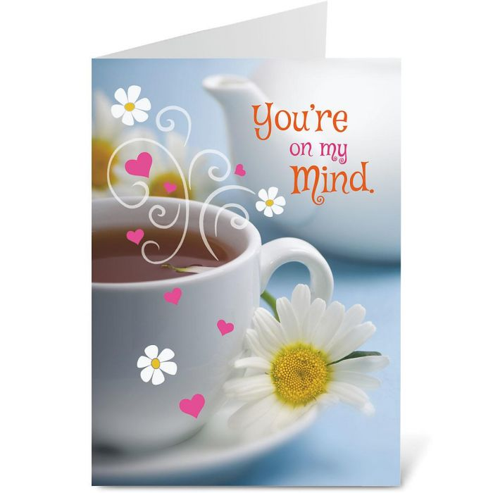 Greeting Cards by Current Catalog