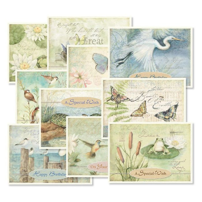 Nature Sanctuary Birthday Greeting Cards Value Pack