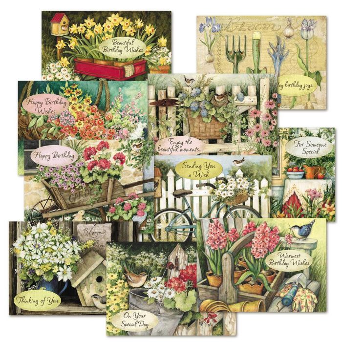 Susan Winget  Birthday Cards Value Pack