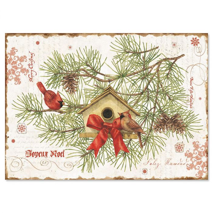 Nature's Praise Christmas Cards - Personalized