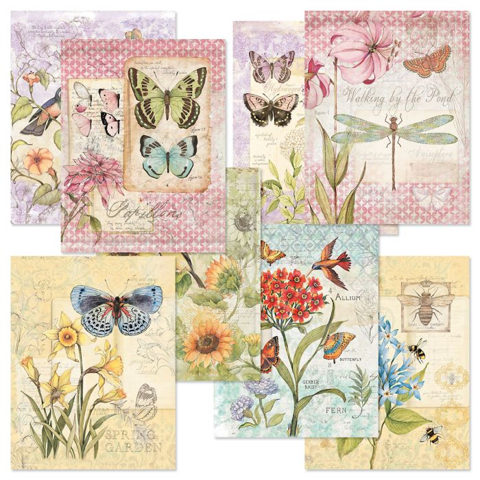 Field Guides Note Card Value Pack
