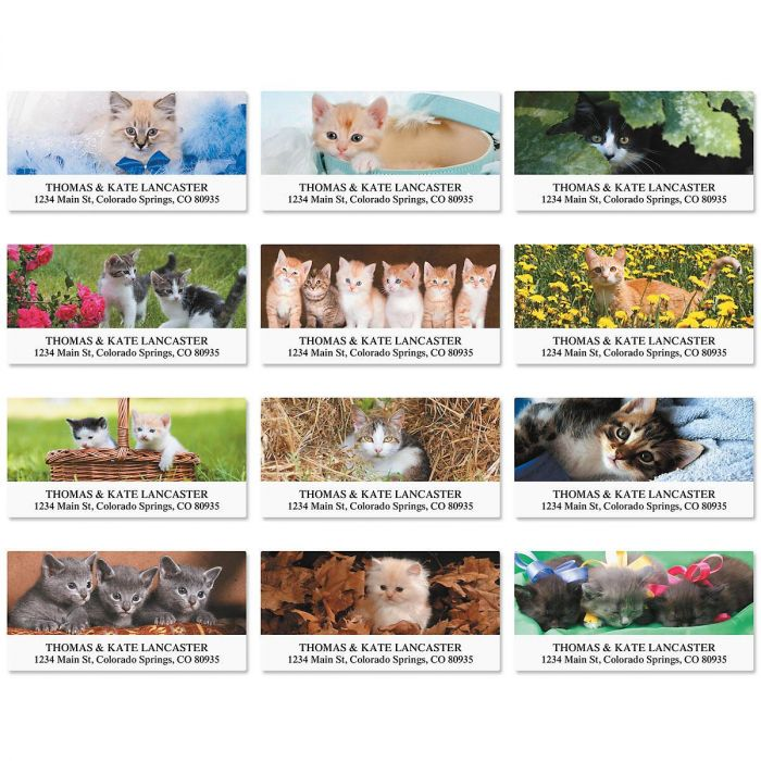 Everyday Cats Deluxe Address Labels  (12 Designs)