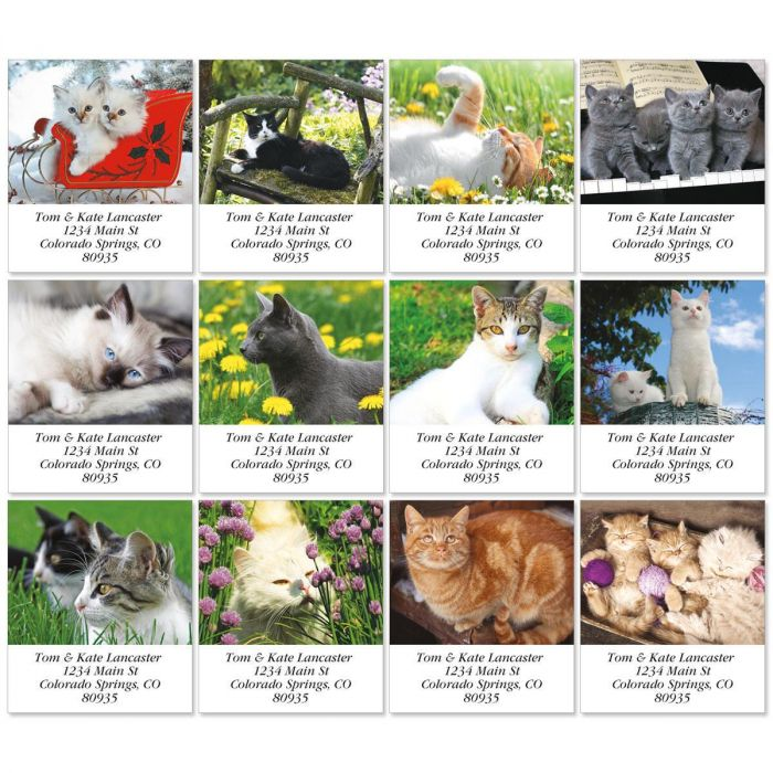 Love Those Cats Select Address Labels  (12 Designs)