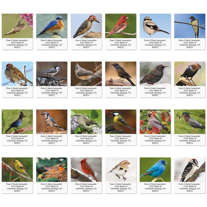 Birds Of North America Select Address Labels  (24 designs)