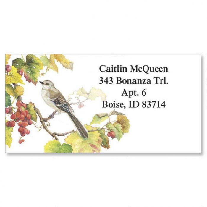 Songbirds Border Address Labels  (6 Designs)