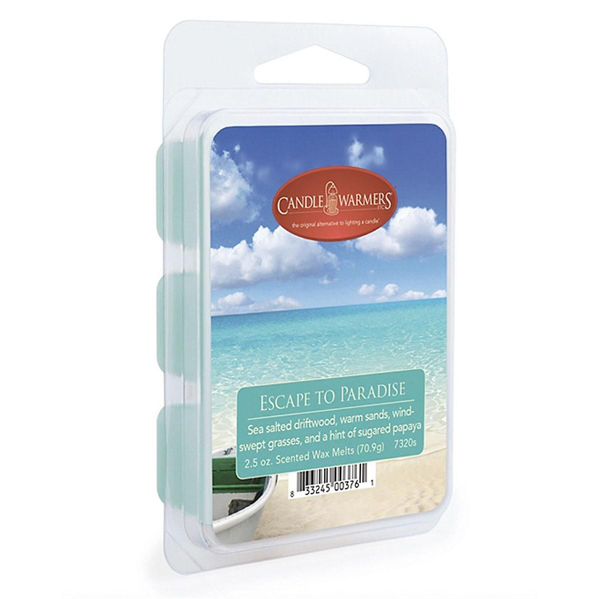 Ocean Tide Wax Fragrance Melt