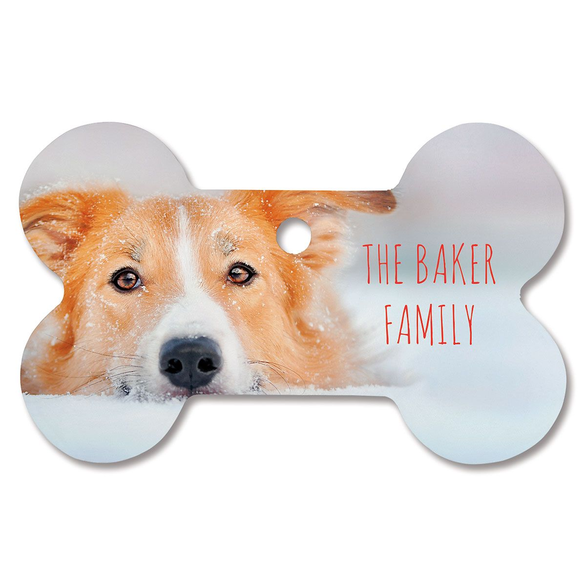 Family Name Personalized Photo Ornament - Bone