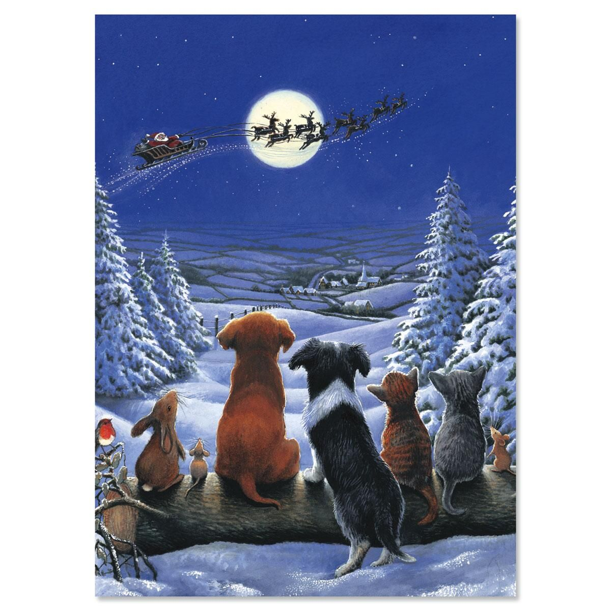 Christmas Dreams Personalized Christmas Cards - Set of 72