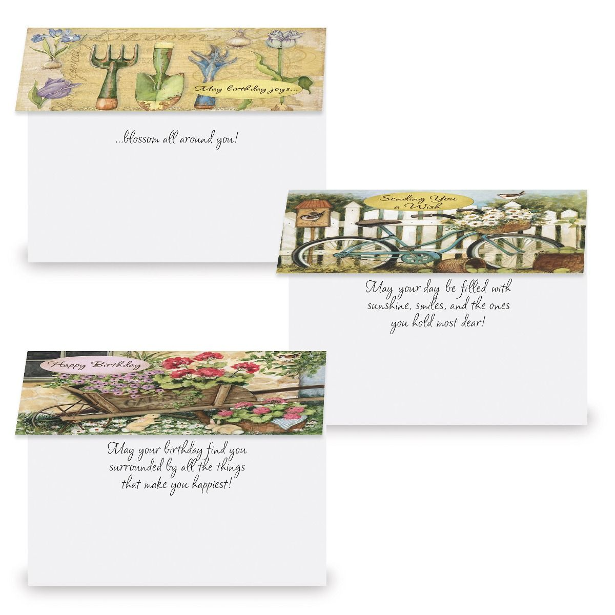 Susan Winget Birthday Cards Value Pack