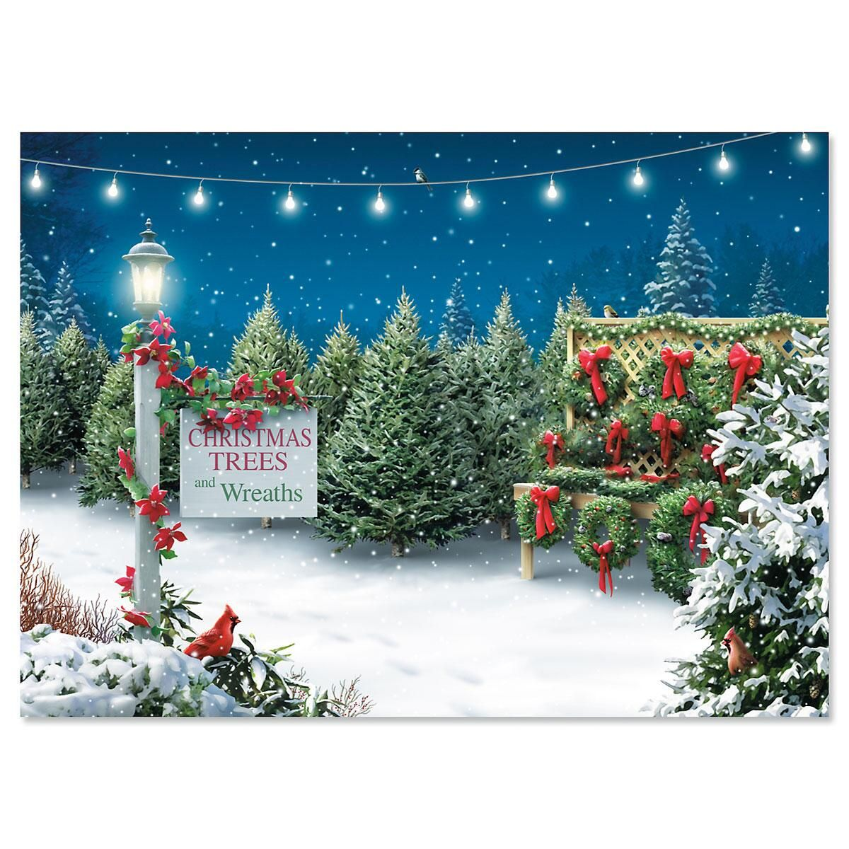 Tis The Season  Personalized Christmas Cards - Set of 72