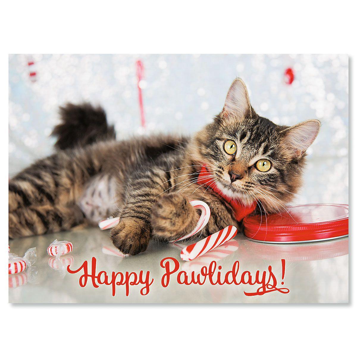 Happy Pawlidays Personalized Christmas Cards - Set of 18