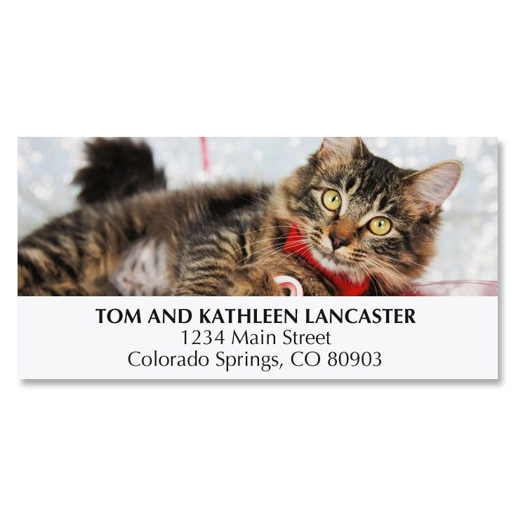 Happy Pawlidays Deluxe Address Labels