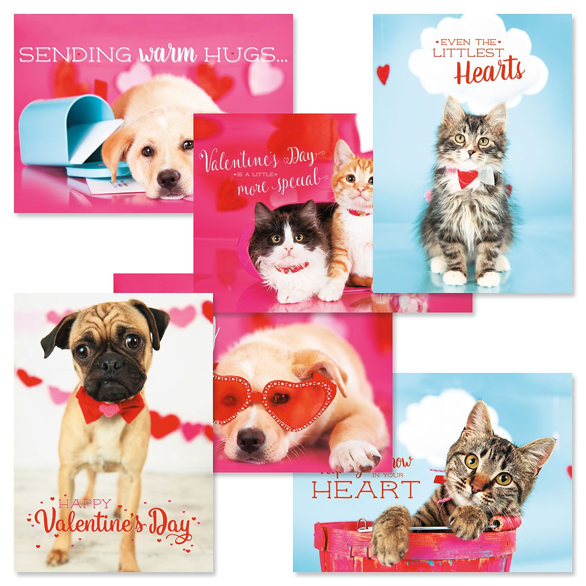 Pets Valentines Day Cards