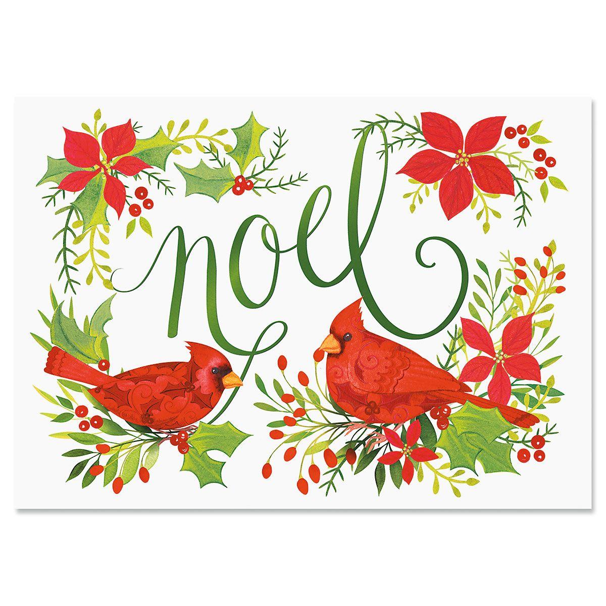 Cardinal Joy Christmas Cards
