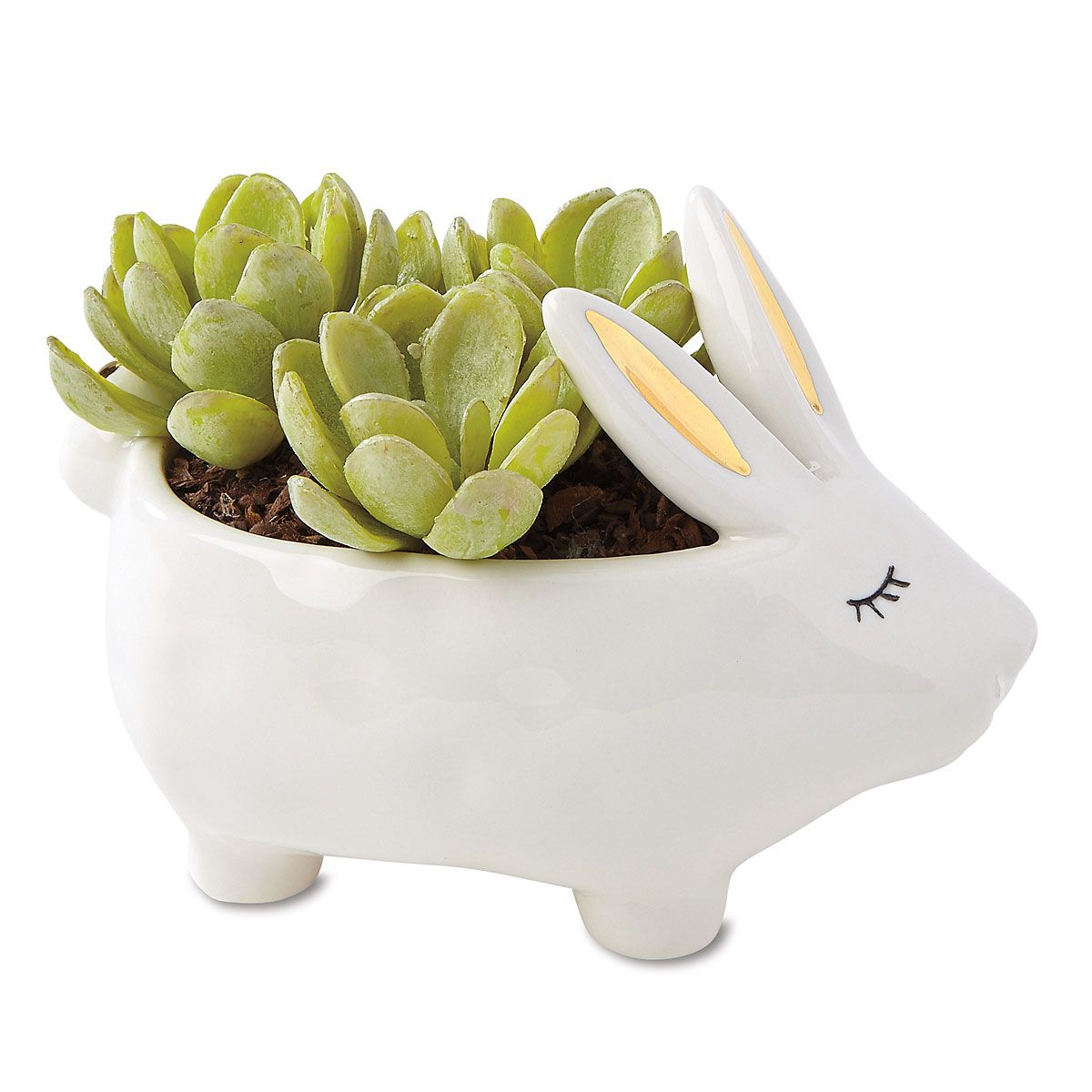 Stoneware Rabbit Planter