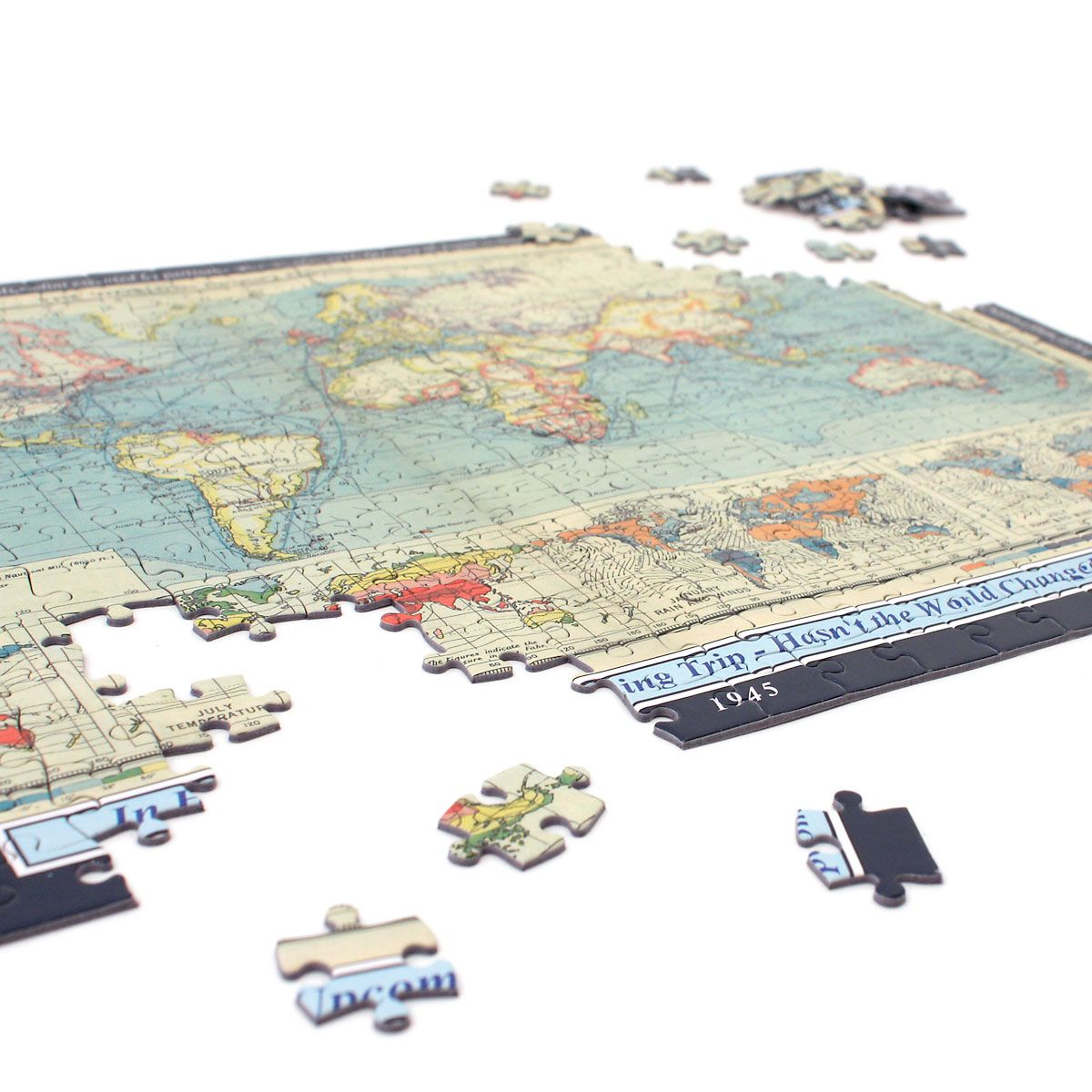 Personalized Your Year, Your World Map Puzzle