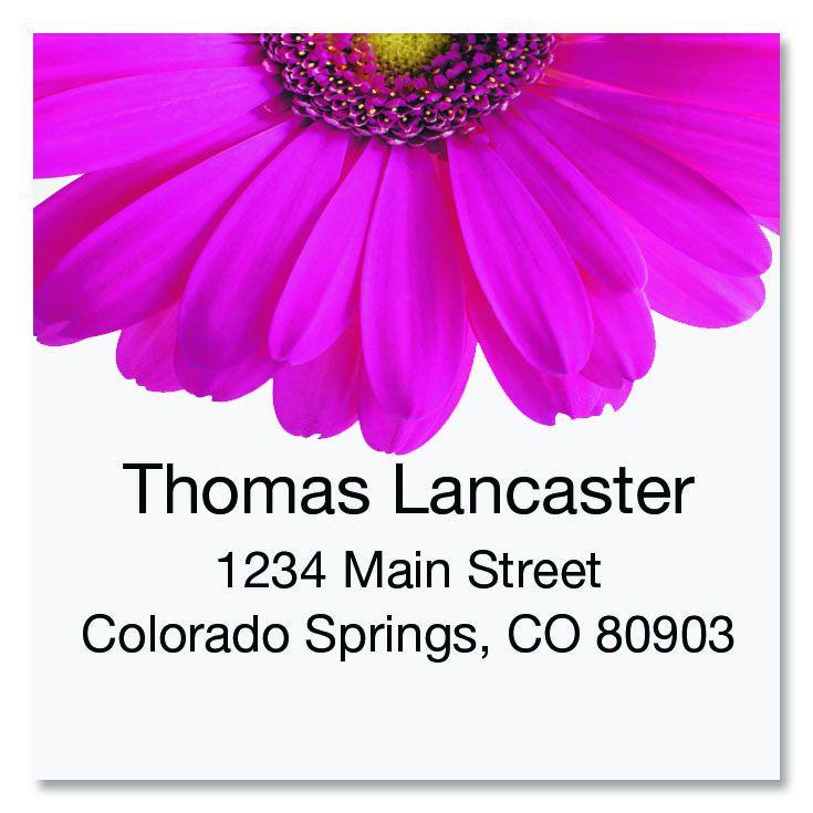 Pink Gerber Large Square Address Labels