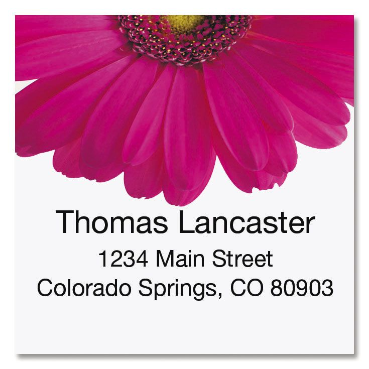 Pink Gerber Large Square Address Labels