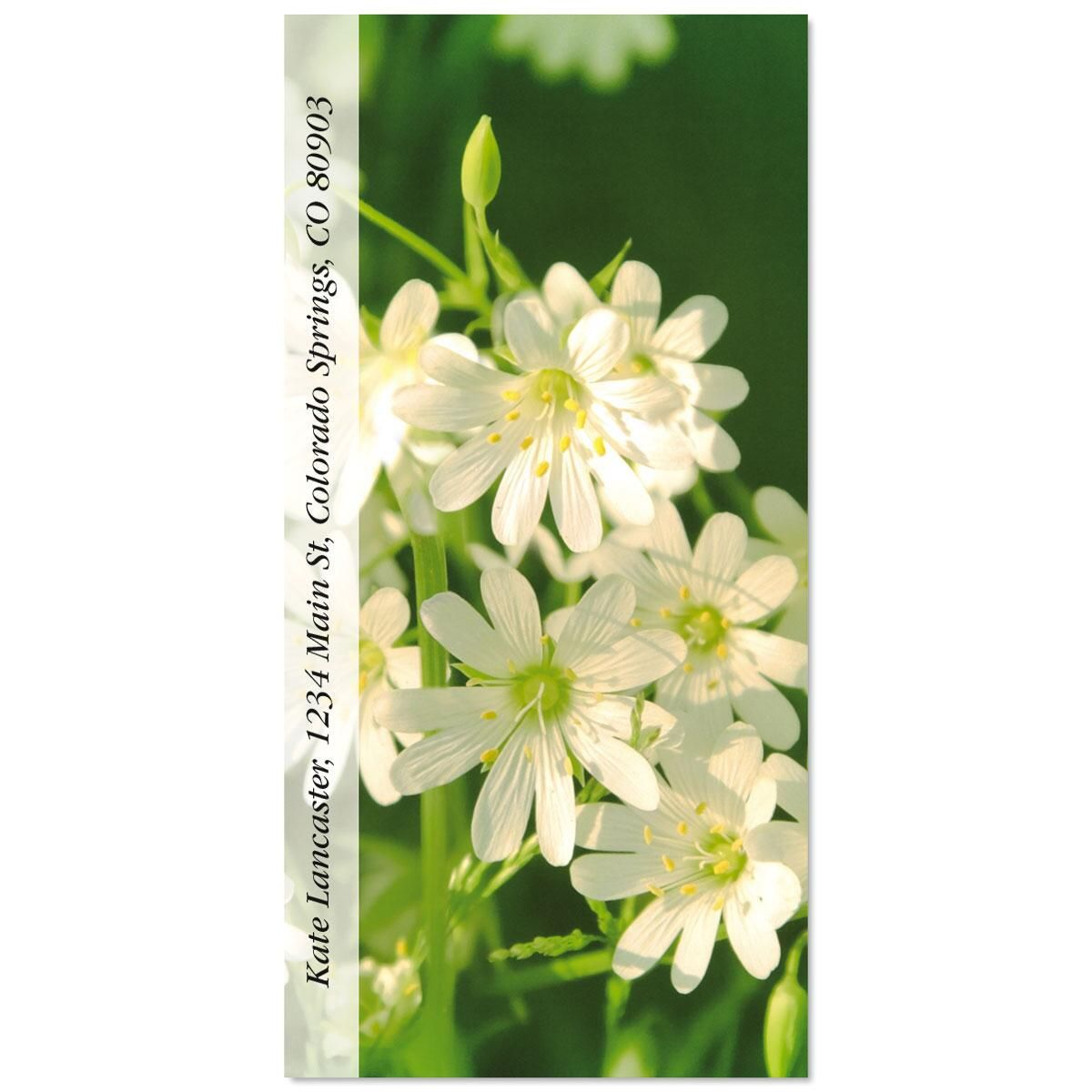 Wildflowers Oversized Address Labels  (5 Designs)