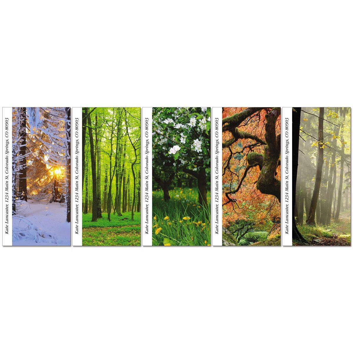 Into The Trees Oversized Address Labels  (5 Designs)