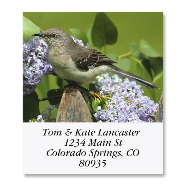 Bird Lover Select Address Labels  (6 Designs)