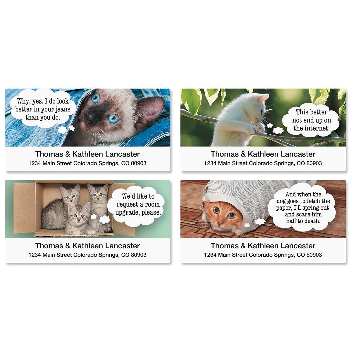 Cattitudes Deluxe Address Labels