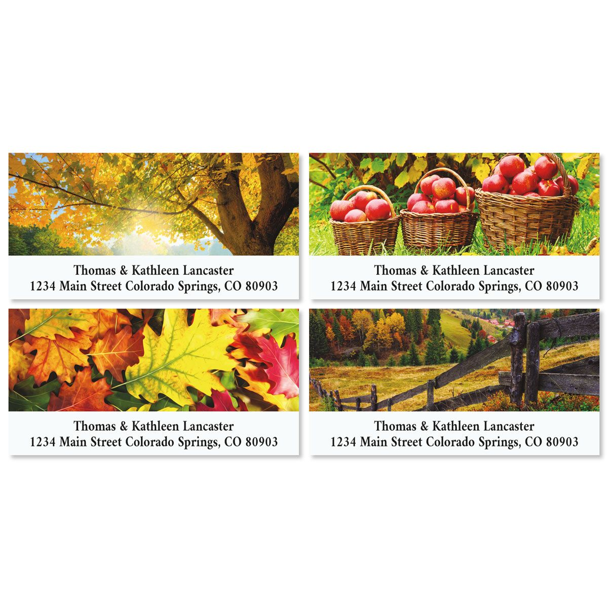 Autumn Deluxe Address Labels (4 Designs)