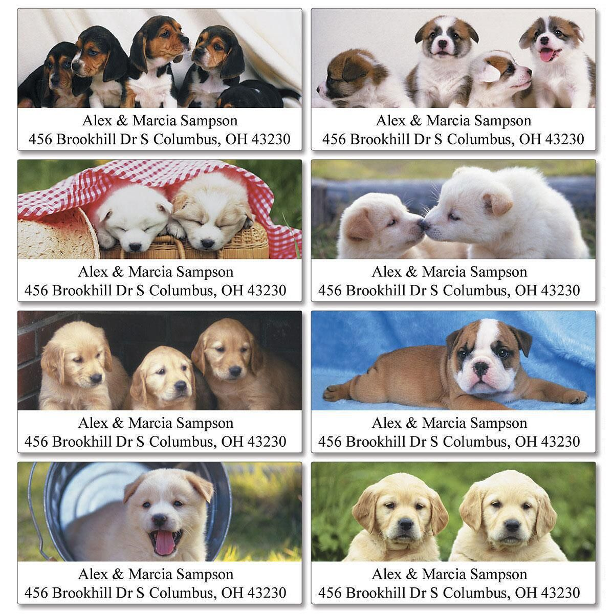 Puppy Days Deluxe Address Labels  (8 Designs)