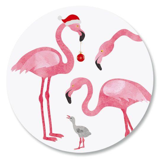 Flamingo Seals