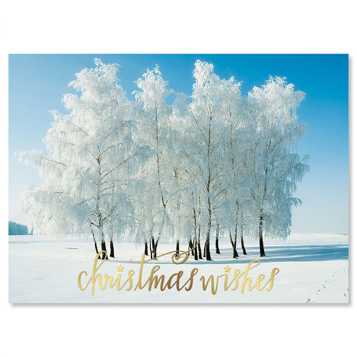Snowy Stillness Nonpersonalized Deluxe Christmas Cards - Set of 14