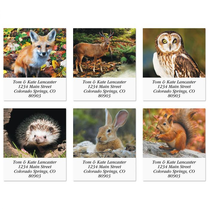 Woodland Animals Select Address Labels  (6 Designs)