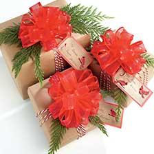 Shop Bows & Ribbons at Current Catalog