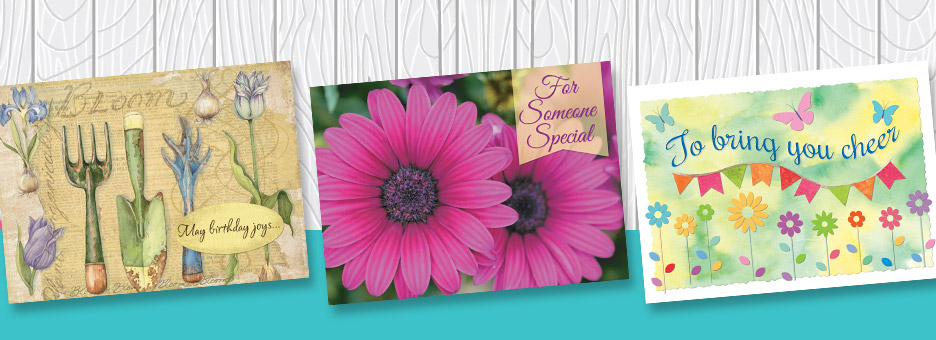 Shop Greeting Card Sale at Current Catalog