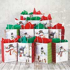 Shop Christmas Gift Bags at Current Catalog