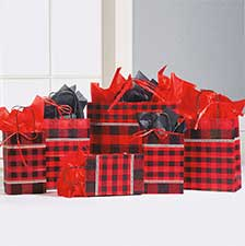Shop Holiday Gift Bags at Current Catalog